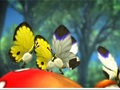 Hot_content_pikmin_3_camera_shot_1