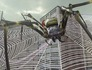Earth Defense Force 2025 Image