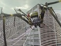 Hot_content_edf2025spider