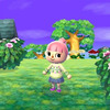 Animal Crossing: New Leaf Screenshot - 1137604