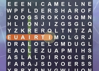 World's Biggest Wordsearch Image