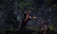 Article_list_the-witcher-3-wild-hunt-screenshot-2