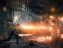 Gallery_small_the-witcher-3-wild-hunt-screenshot-5