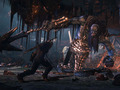 Hot_content_the-witcher-3-wild-hunt-screenshot-11