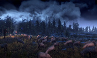 Article_list_the-witcher-3-wild-hunt-screenshot-14