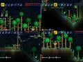 Hot_content_terraria_-_multiplayer_-_3