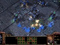 Hot_content_starcraft_2_heart_of_the_swarm