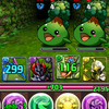 Puzzle & Dragons Screenshot - Puzzle & Dragons
