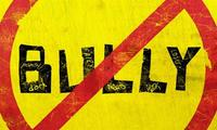 Article_list_the_bully_project_logo
