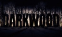 Article_list_darkwood_horror_game