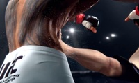 Article_list_ea_sports_ufc_feel_the_fight