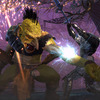 Neverwinter Screenshot - Neverwinter Fury of the Feywild