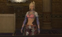 Article_list_final_fantasy_14_companion_app