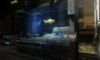 Article_list_news-star-citizen-fish-tank