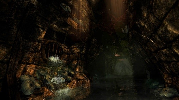Amnesia The Dark Descent - PC - 2