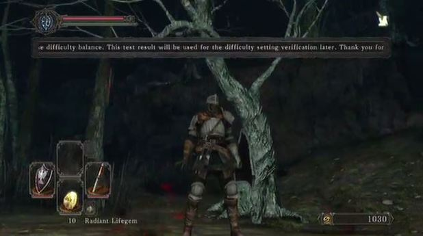 Dark Souls II Screenshot - Dark Souls 2 difficulty