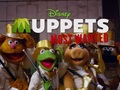Hot_content_muppets_most_wanted