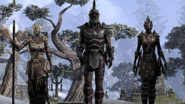 The Elder Scrolls Online Screenshot - 1159383