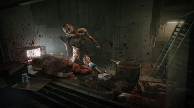 OUTLAST Screenshot - Outlast Whistleblower