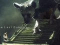 Hot_content_news-last-guardian