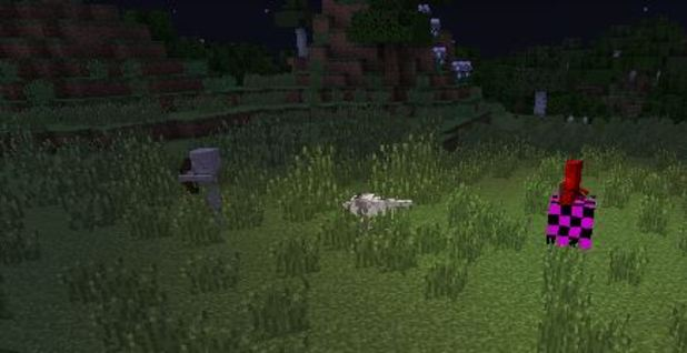 Minecraft Screenshot - 1162405