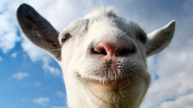 Goat Simulator is getting splitscreen multiplayer