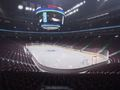 Hot_content_nhl_15_arena