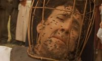 Article_list_nicolas_cage_bees