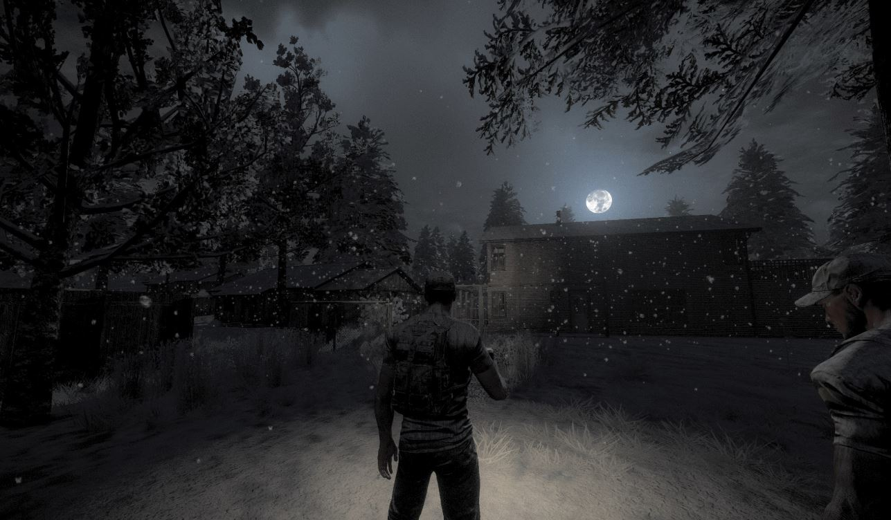 H1Z1 night snow