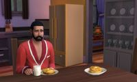 Article_list_the_sims_4_pancakes