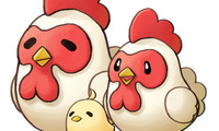 Article_list_chicken
