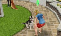Article_list_sims_freeplay_pet_paradise
