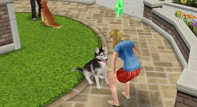 The Sims FreePlay Screenshot - 1169870