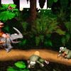Donkey Kong Country: Tropical Freeze Screenshot - 1171582