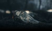 Article_list_the_witcher_3_wild_hunt