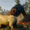 How to defeat the Griffin in The Witcher 3: Wild Hunt