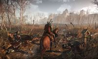 Article_list_the_witcher_3_open_world