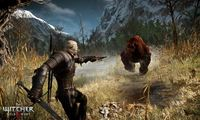 Article_list_the_witcher_3_wild_hunt_geralt_combat_bear