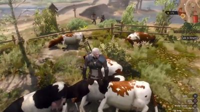 The Witcher 3 Wild Hunt Unlimited Money Exploit