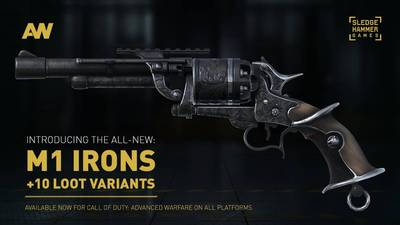 Call of Duty: Advanced Warfare's M1 Irons now available on all platforms