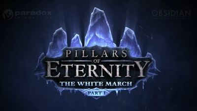 First Pillars of Eternity expansion The White March revealed