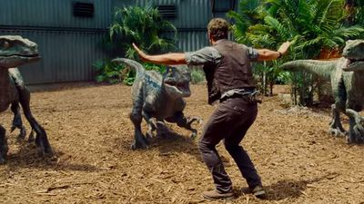 Zookeepers are recreating Chris Pratt's Raptor pose from Jurassic World, and it's hysterical