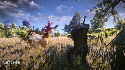 Sounds like The Witcher 3 update 1.07 will solve inventory problems
