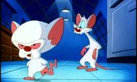 Article_list_pinky-the-brain-pinky-and-the-brain-7398821-660-480