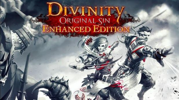 Divinity: Original Sin Enhanced Edition - Feature