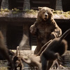 The Jungle Book Super Bowl 50 trailer teased