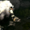 Trico is not alone in new The Last Guardian