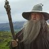 You can't pay Sir Ian McKellen enough to dress up as Gandalf for your wedding