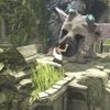 TGS 2016: Check out 18 minutes of The Last Guardian gameplay