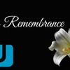 Opinion: In Remembrance, the top 5 Wii U games
